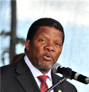 Grain SA has rejected a proposal by Rural Development and Land Reform Minister Gugile Nkwinti. Picture: Getty Images