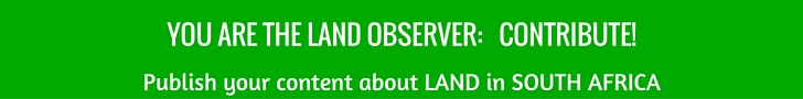 YOU ARE THE LAND observer- contribute!